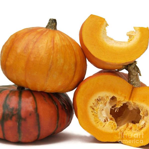 Cucurbitaceae Photograph - Variety Of Pumpkins by Bernard Jaubert