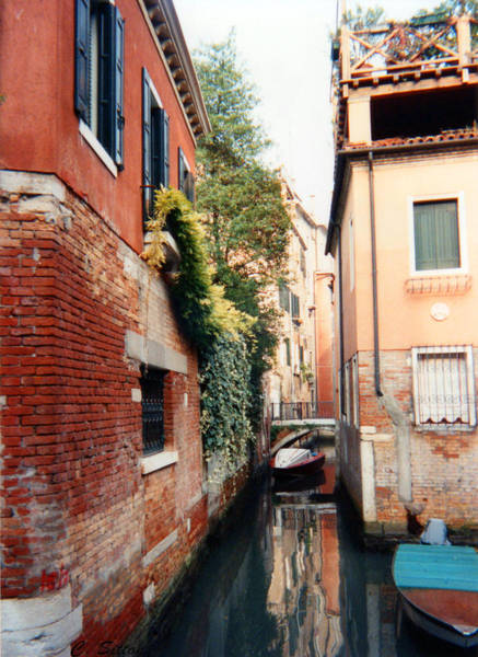Photograph - Venice Canal by C Sitton