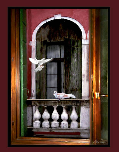 Venice Window Art Print
