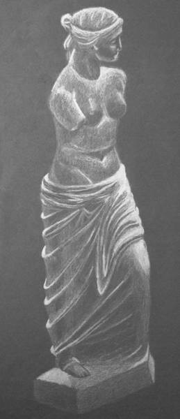 Coolidge Drawing - Venus by Sara Coolidge