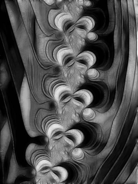 Spine Digital Art - Vertibrae by Sharon Lisa Clarke