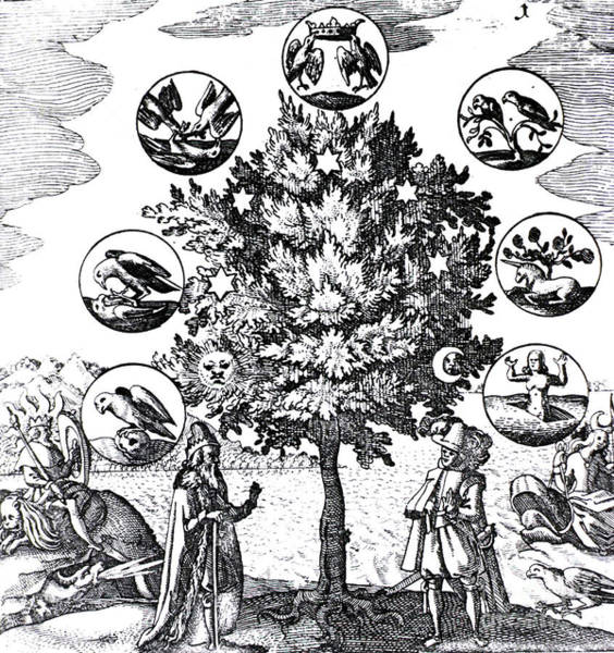 Artemis Photograph - Via Veritatis, The Way Of Truth, 1677 by Science Source