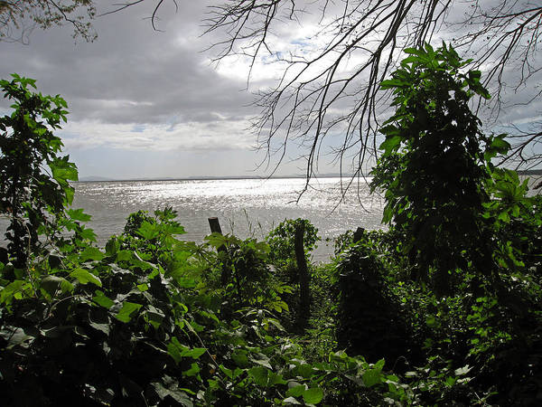 Photograph - View From Charco Verde Ometepe Nicaragua by Kurt Van Wagner