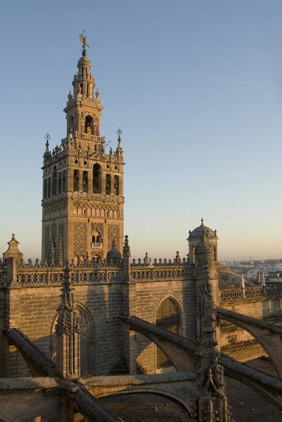Catedral De Sevilla Wall Art - Photograph - View Of The Giralda Tower by Krista Rossow