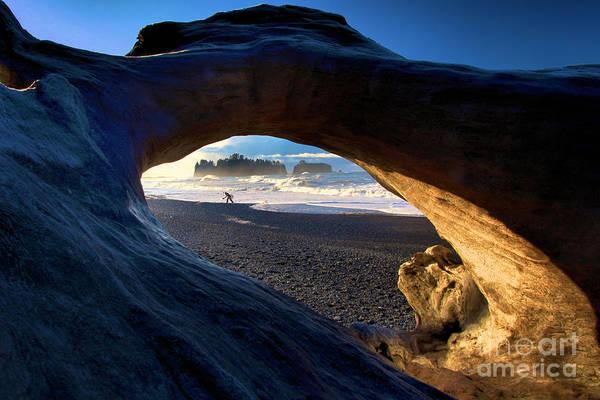 Photograph - View Through A Drift Log by Adam Jewell