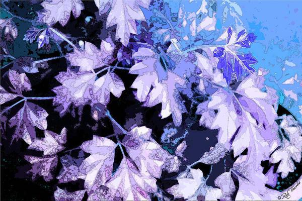 Houseplant Mixed Media - Vine by Rick Thiemke
