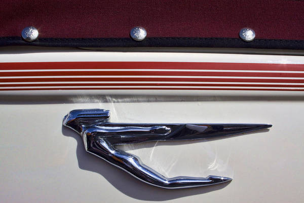Hood Ornament Photograph - Vintage Auburn Automobile Mascot by Carol Leigh