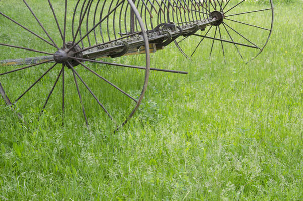Hay Rake Photograph - Vintage Hay Rake Spring Grass by Wilma  Birdwell