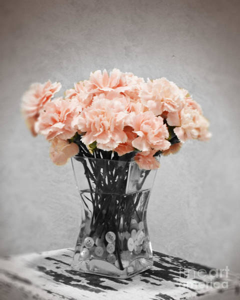 Photograph - Vintage Pink by Traci Cottingham