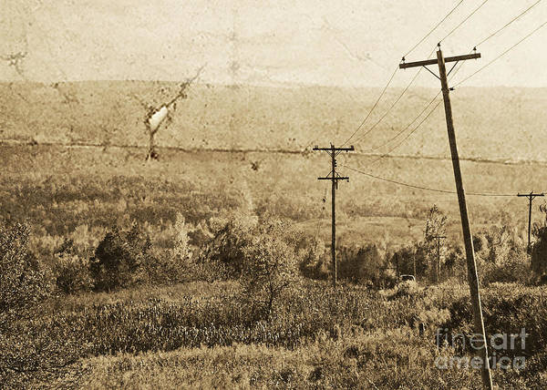 Photograph - Vintage View Of Ontario Fields by Traci Cottingham