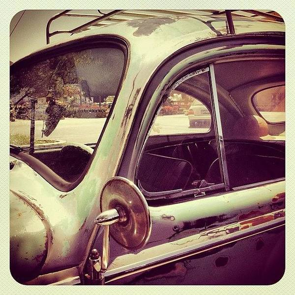 Autos Photograph - Vintage Vw by Gwyn Newcombe