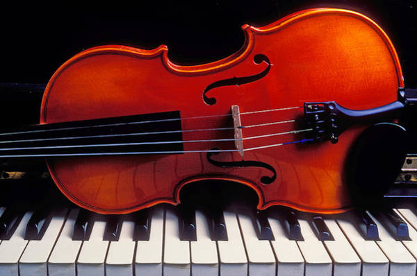 Keyboard Instrument Wall Art - Photograph - Violin On Piano Keys by Garry Gay