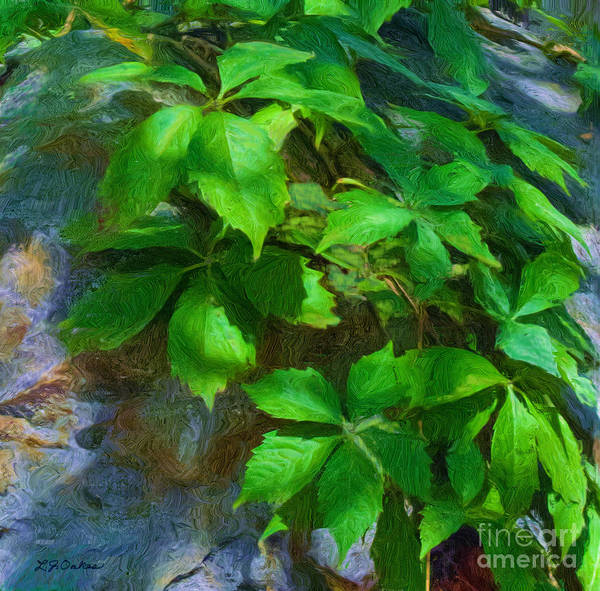 Granite Digital Art - Virginia Creeper by L J Oakes