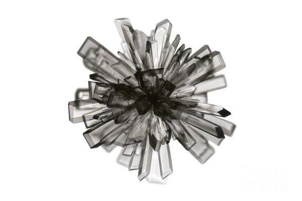 Photograph - Vitamin C Crystal by Raul Gonzalez Perez