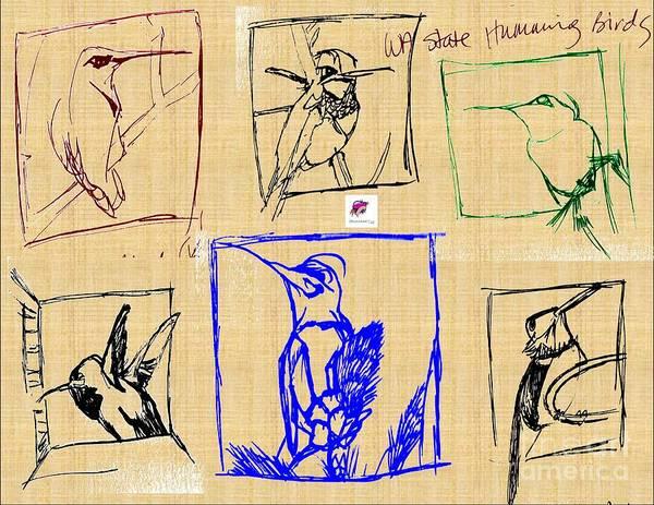 Wa Drawing - Wa State Humming Birds by Carol Rashawnna Williams
