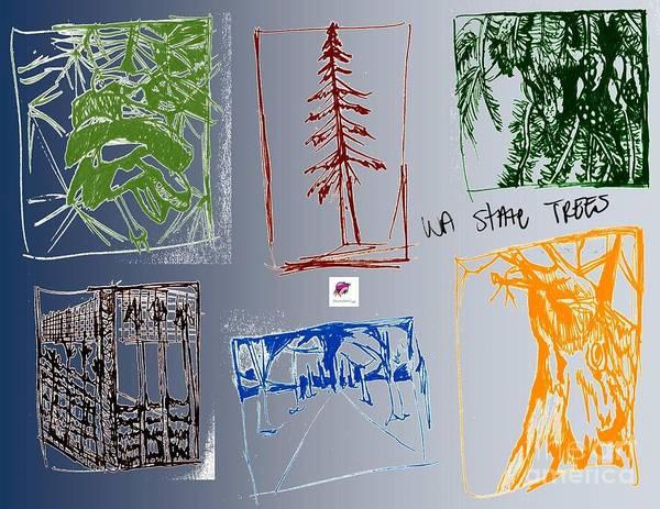 Wa Drawing - Wa State Trees Of The Nw by Carol Rashawnna Williams