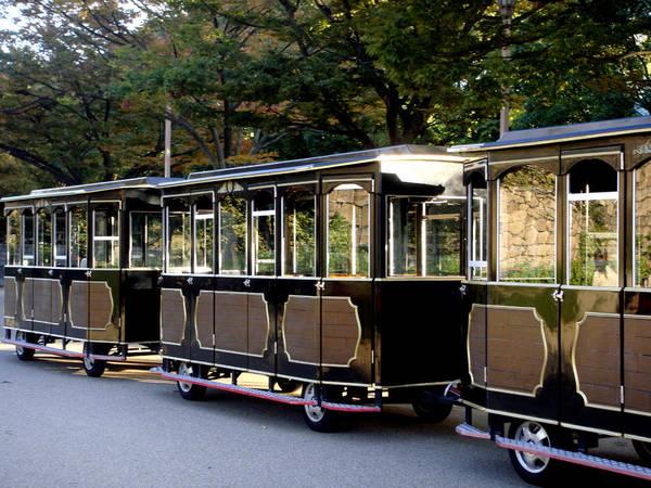 Photograph - Wagons by Roberto Alamino