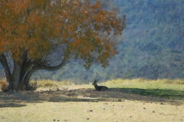 Colorado Wildlife Digital Art - Waiting by Ernie Echols