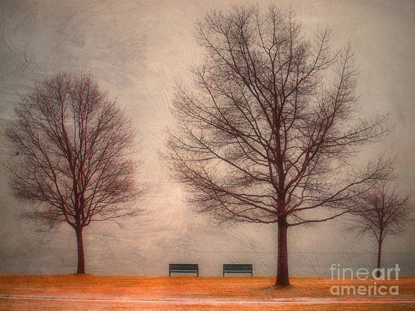 Photograph - Waiting For Winter by Tara Turner
