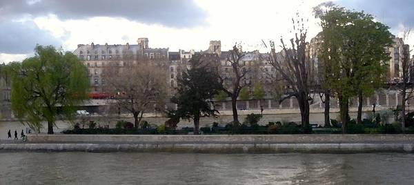 Photograph - Walking In The Streets Of Paris. La Seine Ile De La Cite by Antonella Manganelli