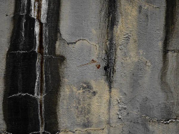 Walls Photograph - Wall Texture Number 5 by Carol Leigh