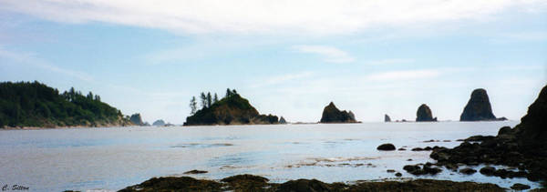 Photograph - Washington Shoreline by C Sitton