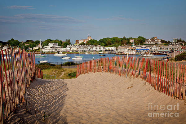 Photograph - Watch Hill Harbor by Susan Cole Kelly