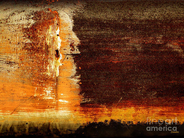 Photograph - Watching The Sunrise by Eena Bo