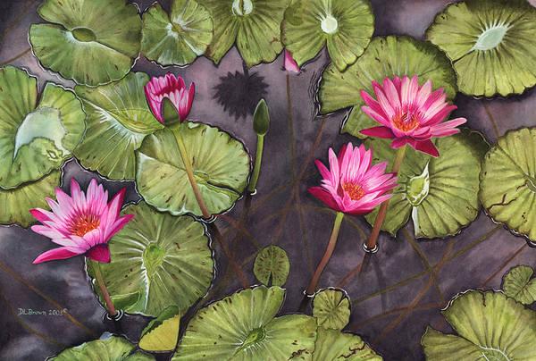Painting - Water Lilies by Deborah Brown Maher