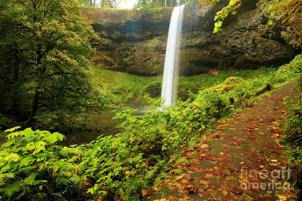 Photograph - Waterfall Along The Trail by Adam Jewell