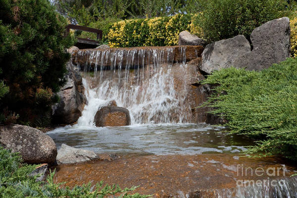West Wales Photograph - Waterfall In A Japanese Garden by John Buxton