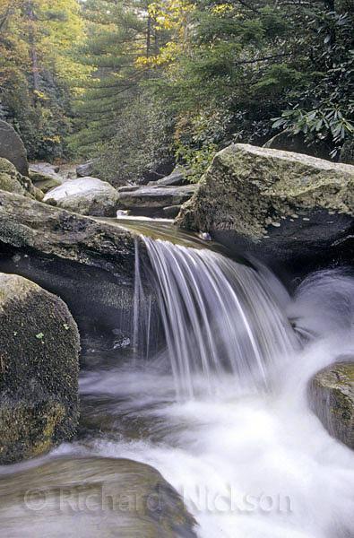 Photograph - Waterfall In Autumn by Richard Nickson
