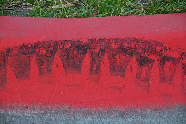 Photograph - Watermelon Curb by David Clanton