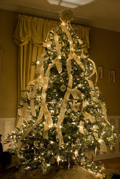 Photograph - Watson's Family Room Christmas by Shelley Neff