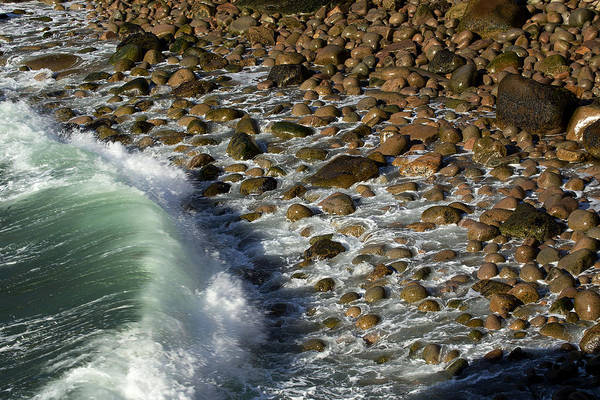 Photograph - Wave by Sara Hudock
