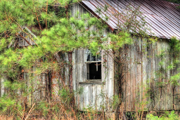 Photograph - Weathered by JC Findley