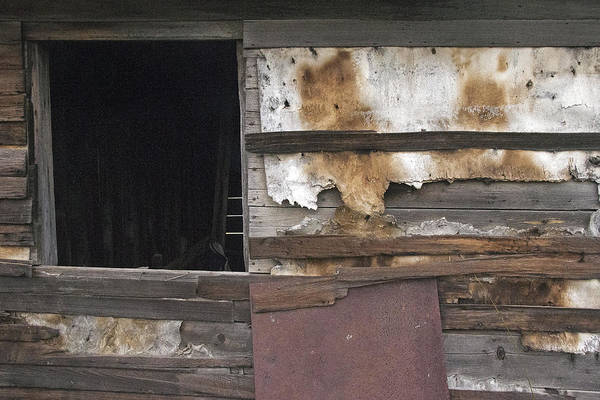 Photograph - Weathered Shed by David Kleinsasser