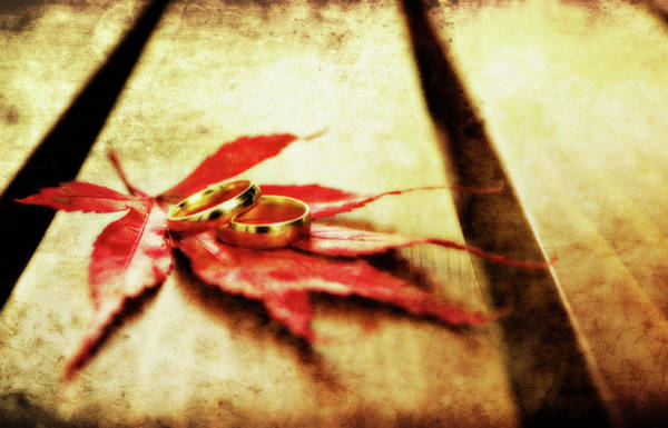 Photograph - Wedding Rings On Red by Meirion Matthias