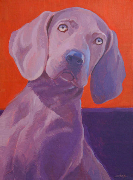Weimaraner Painting - Weimy Why Not by Shawn Shea