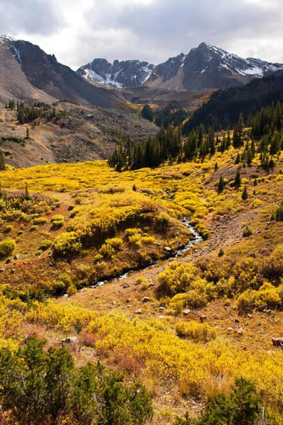 Photograph - West Elk Autumn by Adam Pender