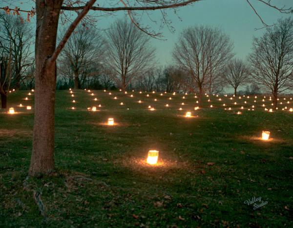 Luminaries Photograph - West Woods 2 - 11 by Judi Quelland