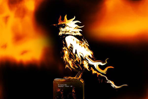 Digital Art - Western Bluebird Fire by James Ahn