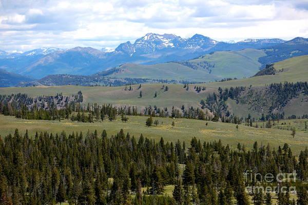 Photograph - Western Mountain Grandeur by Carol Groenen