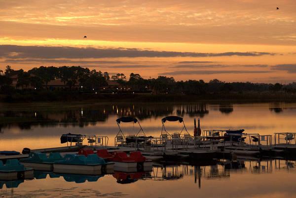 Photograph - Westgate Lakes by Trish Tritz