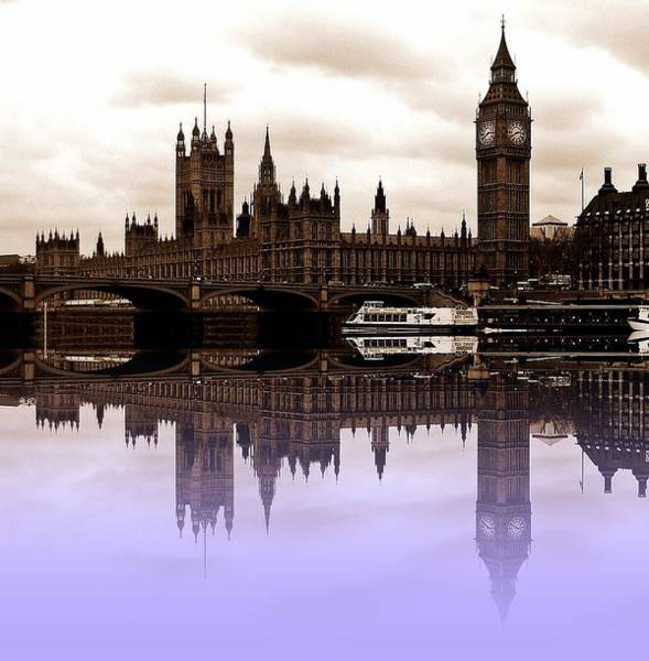 Wall Art - Photograph - Westminster Lilac by Sharon Lisa Clarke