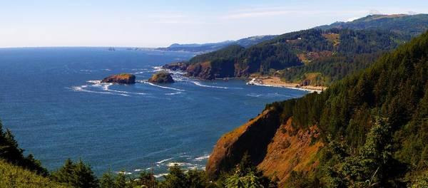 Oregon Coast Mixed Media - Whaleshead 1 by Tatiacha  Bhodsvatan