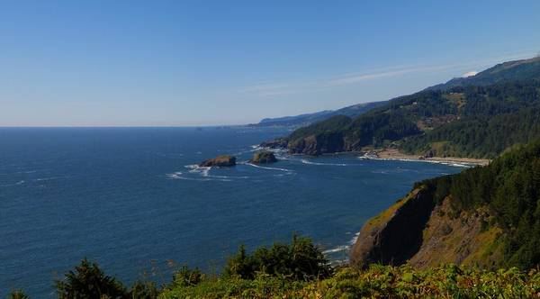 Oregon Coast Mixed Media - Whaleshead 2 by Tatiacha  Bhodsvatan