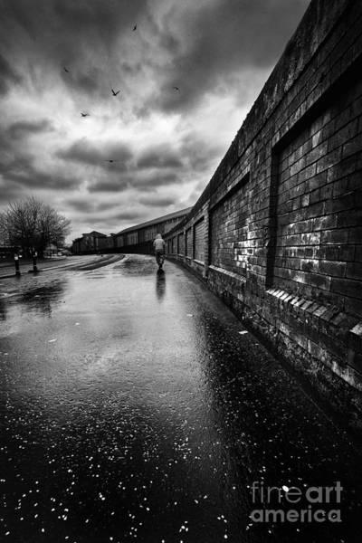 Wall Art - Photograph - What Do I Know by John Farnan