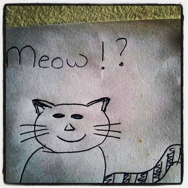 Drawing Wall Art - Photograph - What My Room Mates Draw! #cat #drawing by Abdelrahman Alawwad