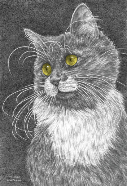 Drawing - Whiskers - Color Tinted Art Print by Kelli Swan